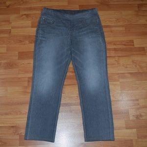 JAG JEANS Pull-On HIGH RISE SKINNY JEAN Sz 14